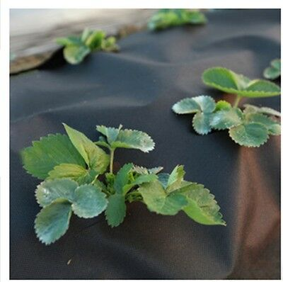 20m Garden Yard Weed Control Landscape Fabric Membrane Mulch Ground Cover Sheet