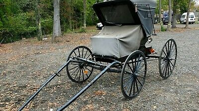 Horse Drawn Doctors Carriage, horse carriage, horse buggy carriage Amish  Sleigh