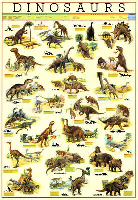 Dinosaur wall chart poster Size A2