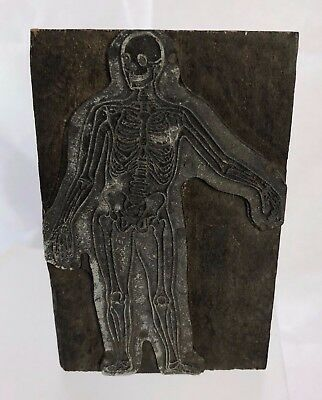 Antique c1900 Full Skeleton Signed Lithographers Letterpress Printing Block