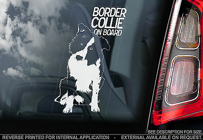 English Border Collie - Car Window Sticker - Scottish Sheep Dog Sheepdog - TYP1