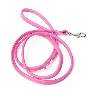 Rose-Red leather leash for small dog cat pet 1cmX120cm  P8L1