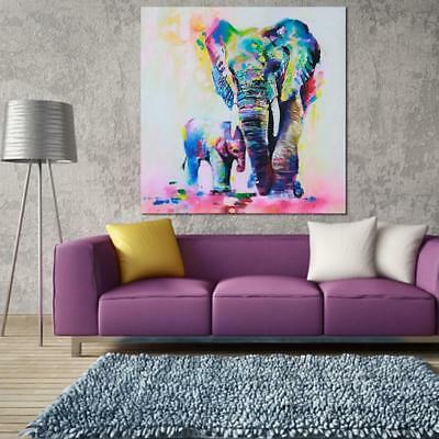 NO Framed Print - Horse Picture Poster Animal Art On Canvas Art N7