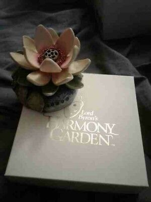 Lord Byron's Harmony Garden Lotus New in the Box