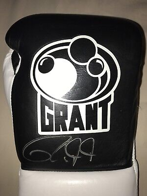 GRANT 10oz LACE UP BOXING GLOVES SIGNED BY ROY JONES JR Certified By STEINER