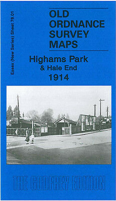 Old Ordnance Survey Map Highams Park Hale End 1914 Walthamstow Selwyn Avenue