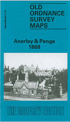 Old Ordnance Survey Map Anerley Penge 1868 Upper & Lower Norwood