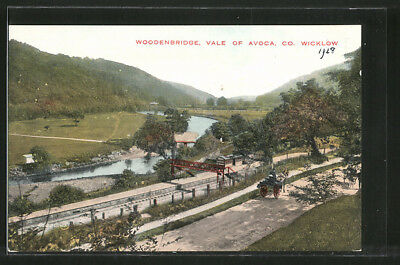 AK Woodenbridge, Vale of Avoca, Panoramablick, Pferdekutsche