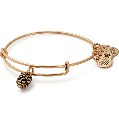ALEX AND ANI Pinecone Charm Bangle | Plan International ~ A-20
