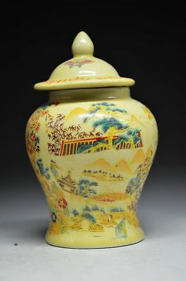 Chinese Famille Rose Porcelain Hand-painted Butterfly& Flower Storage tank Qianl