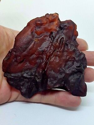 Big Unique Genuine Baltic Sea Amber Transparent/Cherry/Muddy Raw Stone 79.20g