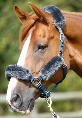 PEI Merino Wool Set for Head Collar - Grey