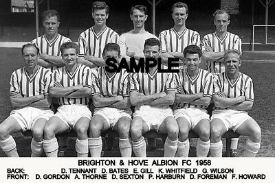 Brighton and Hove Albion FC 1958 Team Photo