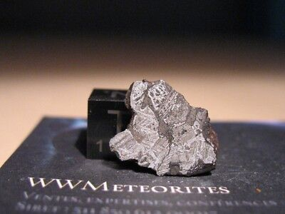 Meteorite Mont Dieu (France) - Ungrouped Iron with inclusion
