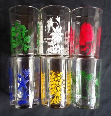 Excellent 6XRETRO 'Swanky Swig' Colourful Glass Tumblers AUSTRALIAN WILDFLOWERS