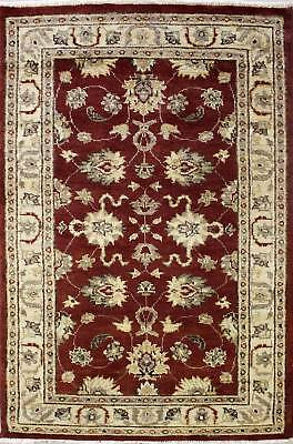 Rugstc 3x5 Senneh Chobi Ziegler Red Area Rug,Natural dye, Hand-Knotted,Wool Pile