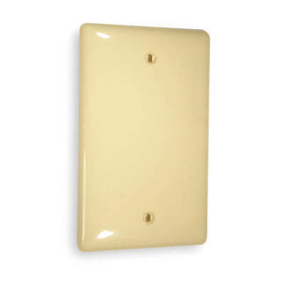 HUBBELL WIRING DEVIC Nylon Blank Box Mount Wall Plate,1 Gang,Ivory, NP13I, Ivory