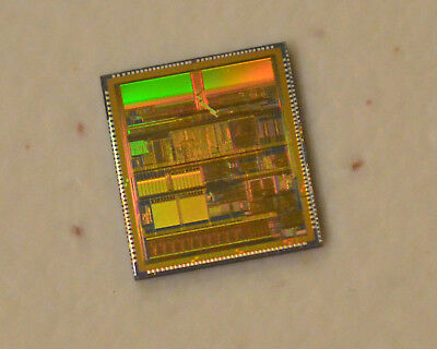 Wafer was diced but dies were never packaged. Vintage AMD K5 CPU die