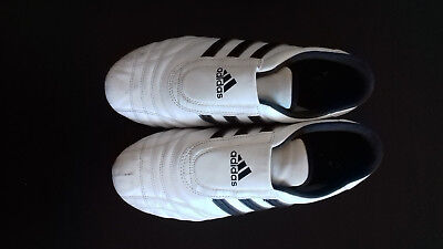 Adidas Martial Arts Shoes (Taekwondo)