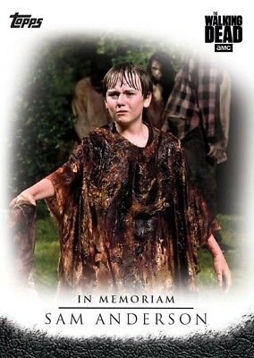 Sam Anderson-Twd Selects-In Memoriam-Topps Walking Dead Card Trader