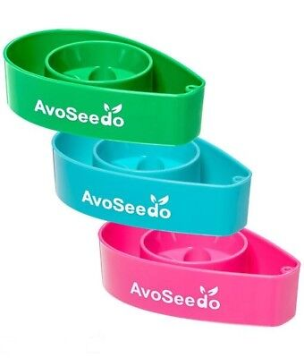 AvoSeedo Bowl 3 Pack Grow Your Own Avocado Tree Evergreen Green+blue+pink