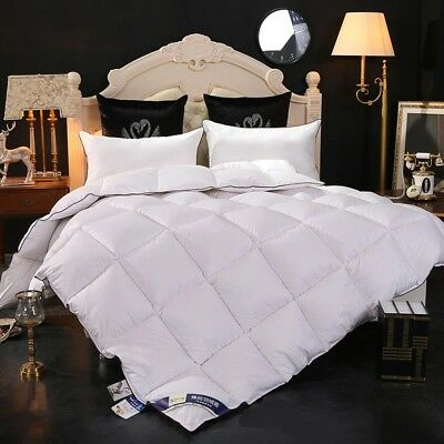 Soft Winter Warm Mixed Velvet Down Duvet Quilt Blanket Bedroom Bedding Set US