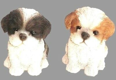 Black Brown Shih Tzu Puppy Two New Realistic Intricately Detailed Dog Figurines