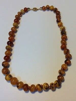 Antique Chinese Baltic AMBER Butterscotch Bead 47.9 gram necklace (m1662)