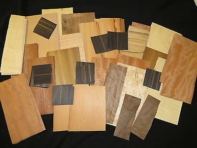 ARTIST DELIGHT! Small Pieces Mixed Exotic & Common Wood Veneer