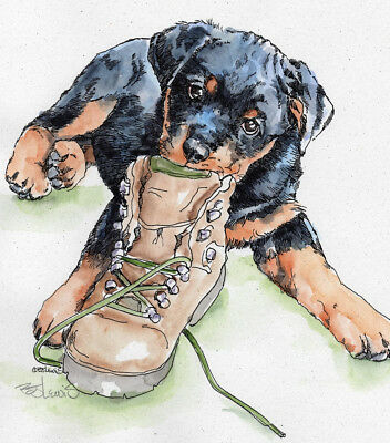 ROTTWEILER SHOE IN Original Watercolor on Ink Print Matted 11x14 Ready to Frame