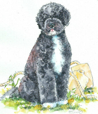PORTUGUESE WATER DOG Original Watercolor on Ink Print Matted 11x14 Ready 2 Frame