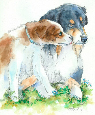 AUSTRALIAN SHEPHERD LOVE Original Watercolor on Ink Print Matted 11x14 Ready2Fra