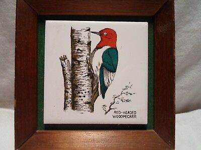 Red-Headed Woodpecker Framed Ceramic Tile by Norleans Japan