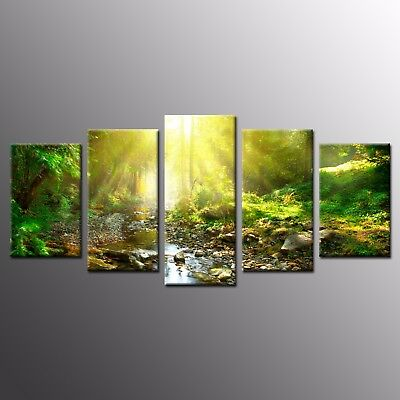 Modern Wall Art Painting Green Woods Sunlight Canvas Print Picture 5pcs
