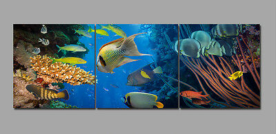 "3Parts 16x16""Undersea Fish--Home Wall Decor Art Printed on Canvas""no frame""223"