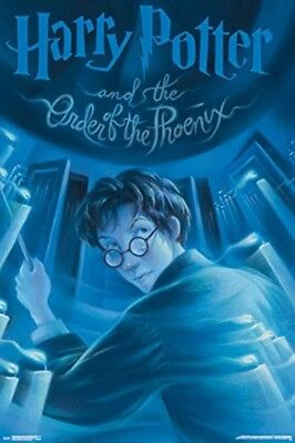 Harry Potter and the Order of the Phoenix Collector's Edition Wall Poster 24x36