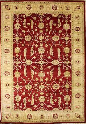Rugstc 6.5x10 Senneh Chobi Ziegler Red Area Rug,Natural dye, Hand-Knotted,Wool