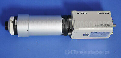 Sony Power HAD DXC-970MD 3CCD Color Video Microscope Camera