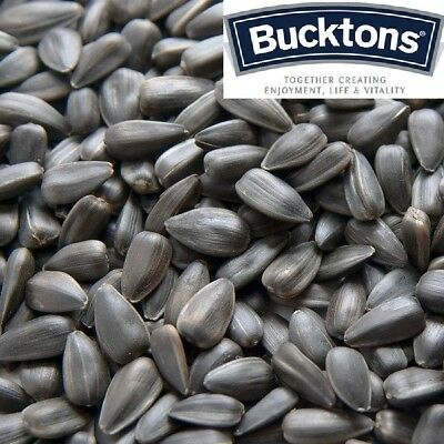 Bucktons Black Sunflower Bird Seed - 500g 1kg 2kg 3kg 5kg - Individual Clear Bag