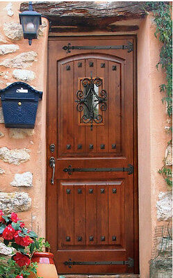 Tuscany Arch Top Knotty Alder Rustic Single Entry Door