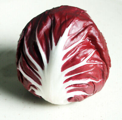 1200 Seeds Chicory Italian Radicchio Palla Rossa 3 / Vegetable garden SALADS