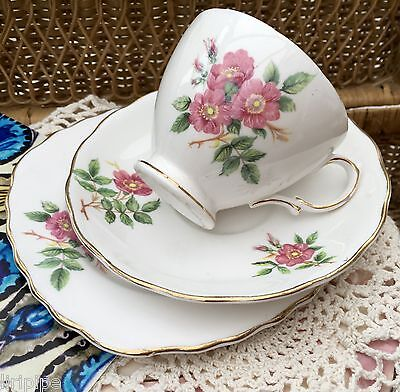 ROYAL VALE BONE CHINA 1950s TRIO CUP SAUCER PLATE SET - PINK ROSES GILDED TRIM