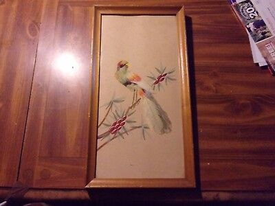Framed Bird Picture Made Out Of Feathers