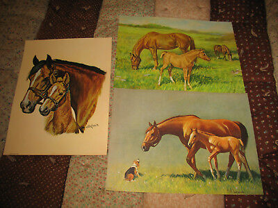 Village Blacksmith by Charles J Lewis Horse Foal Dog  8x10 Print Picture 1643
