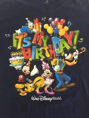 Large L Its My Birthday Walt Disney World T Shirt Mickey Donald Cake WDW Blue