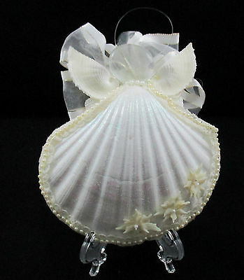 Angel Sea Shell Christmas Ornament Handmade White