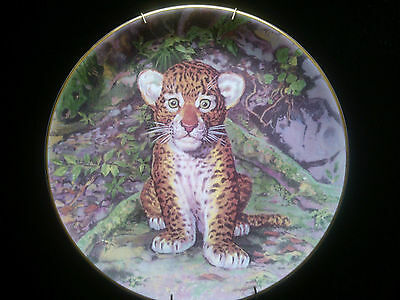 Royal Stafford limited edition plate - Jungle Prince with hanger