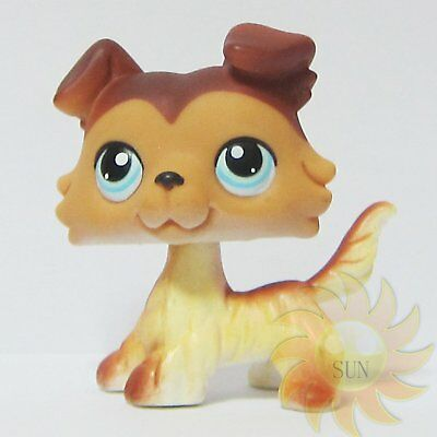 Littlest Pet Shop LPS Animal Loose Toy Brown Ears Blue Eyes Collie Dog Puppy #58