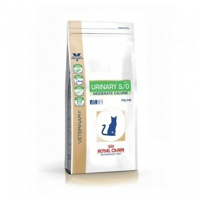 Croquettes Veterinary Diet Urinary S/O Moderate Calorie pour Chat - Royal Canin