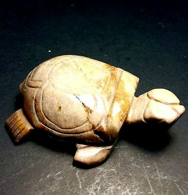 Petrified Wood Turtle Carved Natural StoneThai Amulet Gain Wealth Long Live Rich